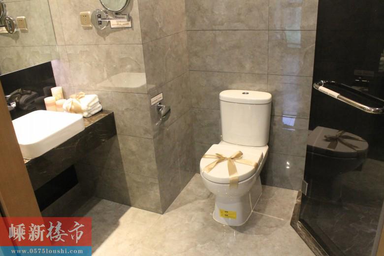 暂停 新昌海洋城·海洋国际公馆e户型74㎡鉴赏(一室两厅一卫一厨)(1
