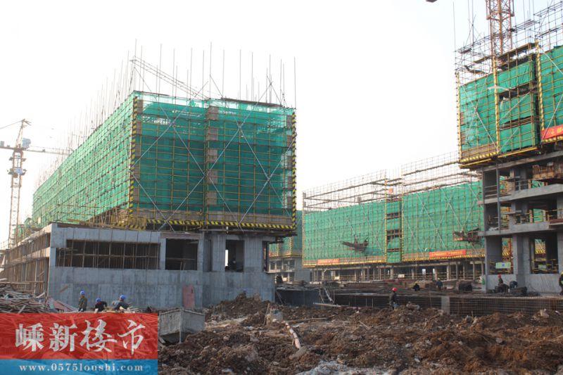 城南 | 嵊州新城·吾悦广场2016年1月施工进度 (5)