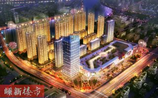 新城吾悦广场——热销神话背后的十大秘密之三:烫金中心,赚富未来